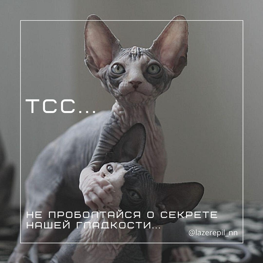Лазерная эпиляция | Нижний Новгород